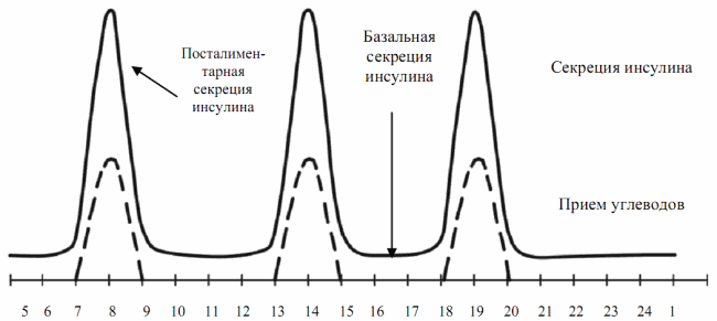 График секреции инсулина
